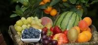 天气渐凉  蔬菜价格上涨生活必需品格运行平稳