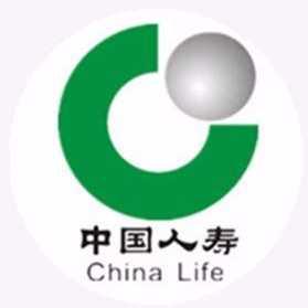 中国人寿保险(集团)公司